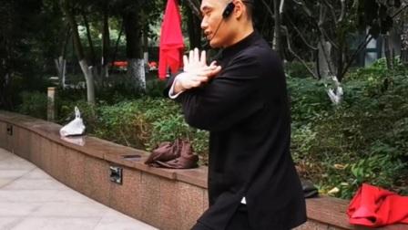 陈氏太极拳精要十八式 6 白鹅亮翅,陈志强老师教学