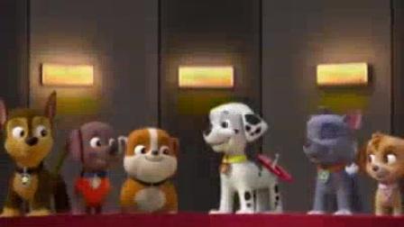 我在狗狗拯救市长大赛截了一段小视频