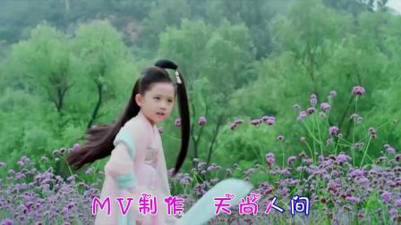 麦小兜 - 小道童 原版蓝光MV