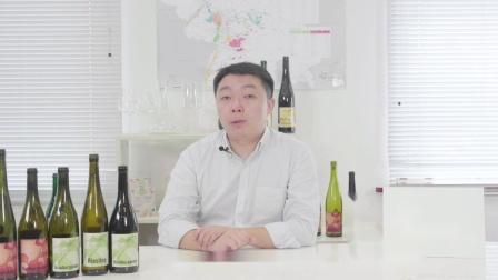 第7集-德国葡萄酒前三大产区(莱茵黑森,法尔兹与巴登)