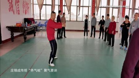 """庄锡成传授太极拳""""养气桩""""聚气要诀"""