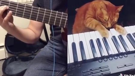 多么有爱和谐呀!这个猫咪和它有爱的主人仿佛就是在奏响水瓶时代即将来临的序曲一般!万物一体、和谐共生的伟大时代即将来临!