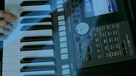 我是否也在你心中 电子琴 键盘