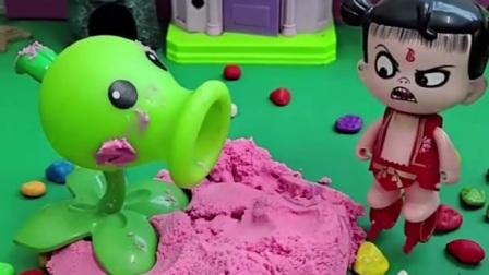 豌豆射手躲沙子里玩,哪吒给豌豆嘴巴添水,哪吒不理豌豆射手