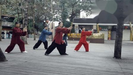 传统杨氏太极拳85式