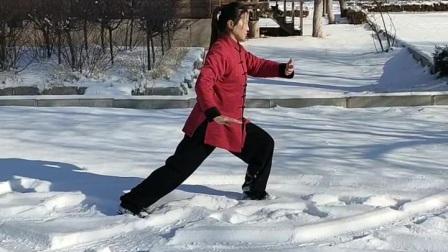 雪地练杨氏二十四式简化太极拳