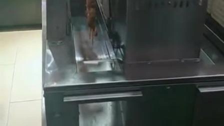 自动烧烤炉