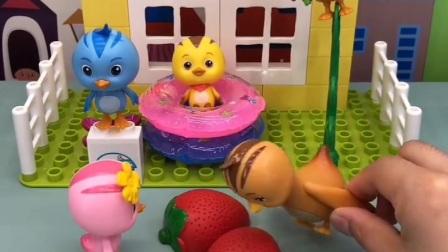 萌鸡朵朵给妈妈洗草莓吃,欢欢也想让朵朵洗,朵朵不去