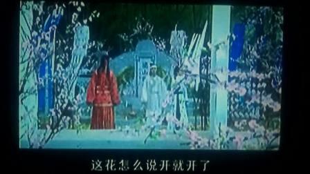 梁山伯与祝英台化蝶松林DVD碟