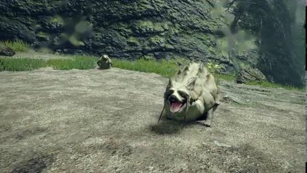 《怪物猎人:崛起》狸兽