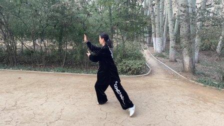 刘慧 慢动作演练42式太极拳