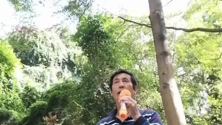 草民演唱福州闽剧野猪林选段