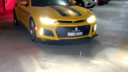 大黄蜂的车主居然是?!泰罗?!