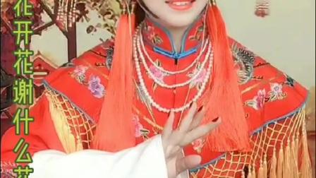毛楠楠—安徽黄梅戏《夫妻观灯 》