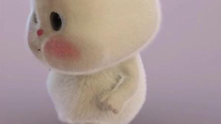短耳兔小胖:像不像减肥中的你?