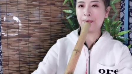江山无限,f调台桂南箫