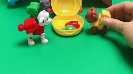 狗狗汪汪队的帽子不见了,它们出来找帽子,帽子被谁拿走了呢