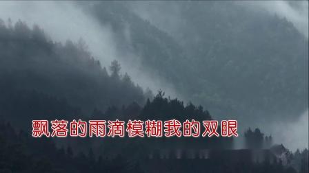 告别故乡的云-- 刘亚芹(双音双轨) HD .mpg