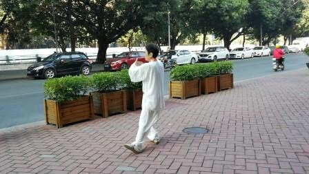 陈桂丽88式太极拳分段背面演示(4)