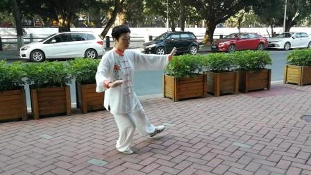 陈桂丽88式太极拳分段背面演示(5)