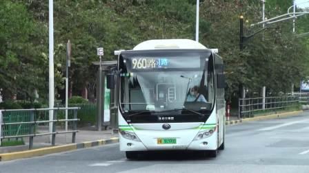 上海公交 巴士一公司 960路 Z1D-0113
