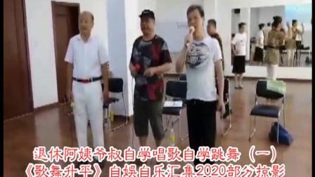1汇总《歌舞升平》退休自娱自乐2020自学唱歌自学跳舞部分掠影之DVD一(时长:117分钟)