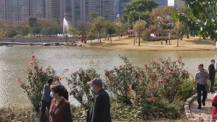 游览玫瑰园 摄制 乐哈哈