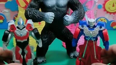 益智玩具:大猩猩要和奥特曼一起去攻打怪兽,这下厉害了!
