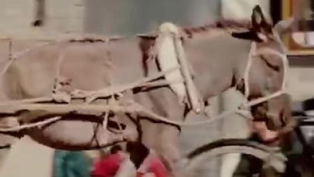 【好看视频】观看65年前的北京城市珍贵影像 感受下以前人民善良和淳朴                                (月亮之歌提供 谷九展上传)