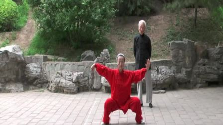 传统太极拳02---朱宝珍