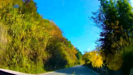 《秋意正浓大别山》第三篇 花石乡到古碑镇 中国红岭马丁公路行前景展示