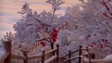 包娜娜《夕阳山外山》