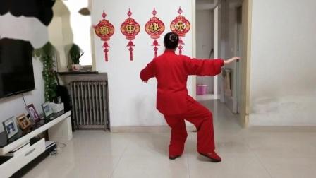 傅传杨式传统太极拳28式:王希红(18)