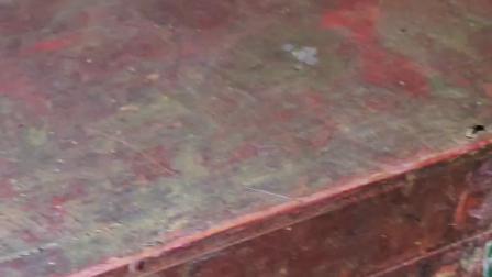 百年水库涵洞发现木箱,有怪鱼守护