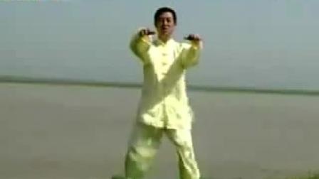 我在陈氏太极拳精要十八式分解动作教程(陈正雷)截取了一段小视频