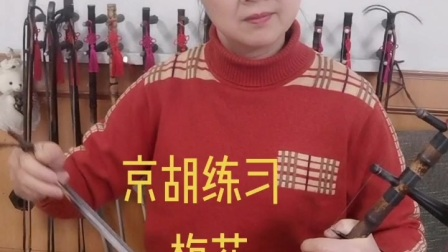 小姜学艺京胡练习梅花南阳梅苑京韵