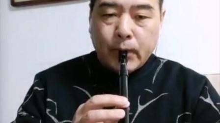 susato哨笛《青藏高原》蓝藻演奏