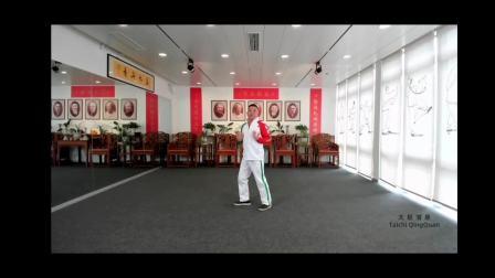 太极拳如何能练到形神兼备(付清泉)