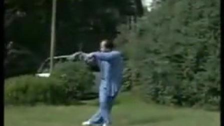 我在木兰拳双龙穿云双剑 正面示范截取了一段小视频