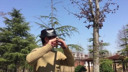 笛子独奏【水乡船歌】 顾村公园 摄影:章银妹 制作演奏:滕宝华 2021年3月22日