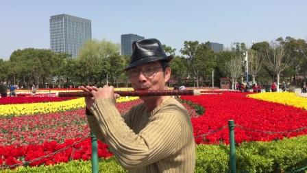 笛子独奏【春到湘江】 大宁郁金香公园 摄影:章银妹 制作演奏:滕宝华 2021年3月25日