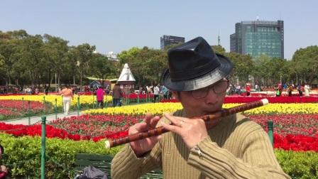 笛子独奏【一搭搭里】 大宁郁金香公园 摄影:章银妹 制作演奏:滕宝华 2021年3月25日