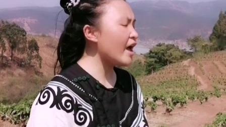 彝族歌曲《飞》吉地色呷、沙阿英