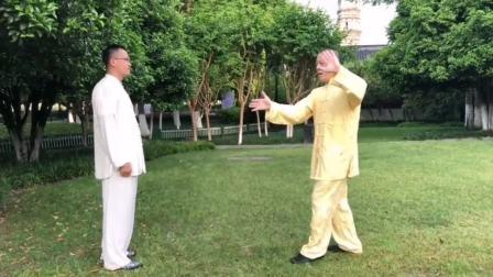 杨氏太极拳85式用法全集(四)