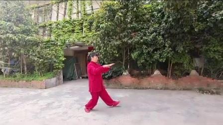 杨氏太极拳简化24式,小平演练