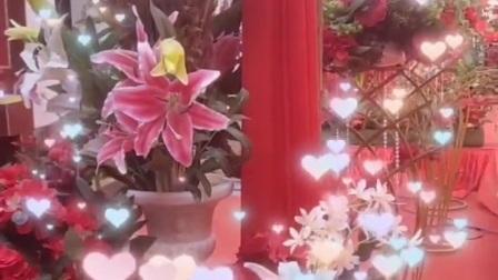 永年婚庆赵豹江邀约电话15532094129