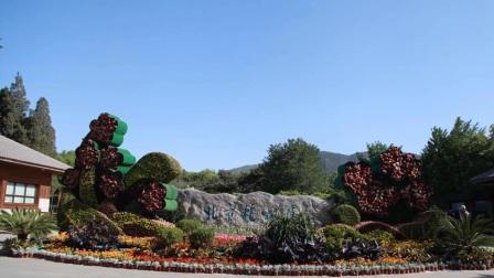 北京市植物园(二)