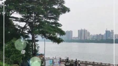 广东清远市街景随拍1