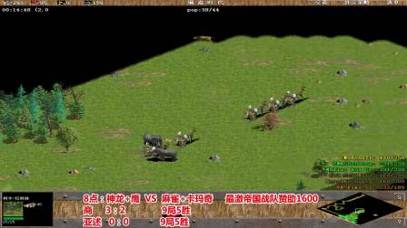 2021-04-06神龙+鹰 VS 麻雀+卡玛奇