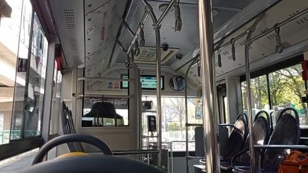 上海公交车浦东62路台儿庄路地铁站-金桥路金杨路